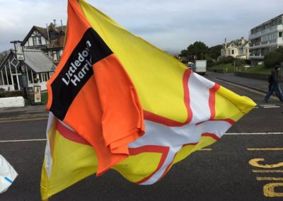 Littledown Harriers Flag
